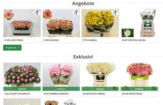Nagel Blumen Webshop